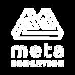 Meta Education Logo_edited.png