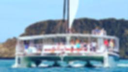 Catamaran-Planet-Dolphin.jpg