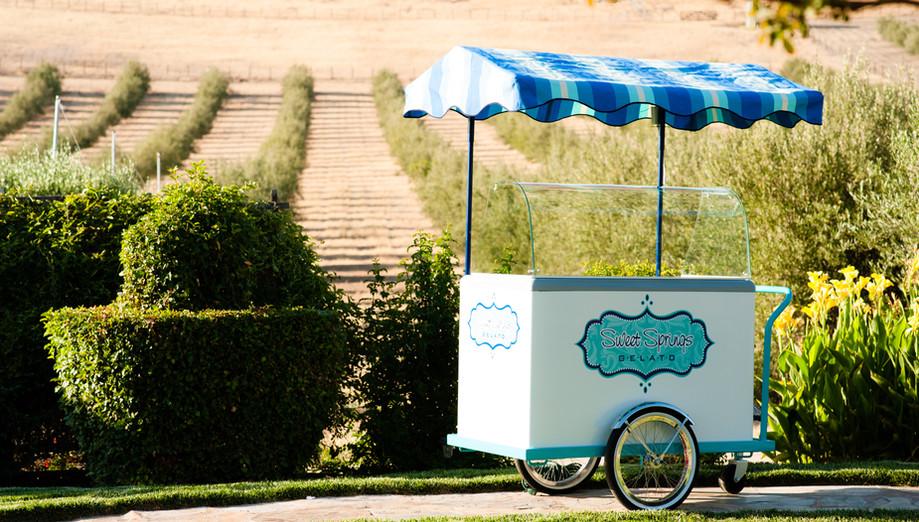 Ice Cream Cart-photo by Dana Todd Photography