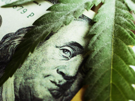 Bootstrapping the Global Supply Chain with Strong Specialty Operators: Welcome to Cannabis 5.0