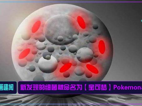 新发现的细菌被命名为【宝可梦】Pokemonas