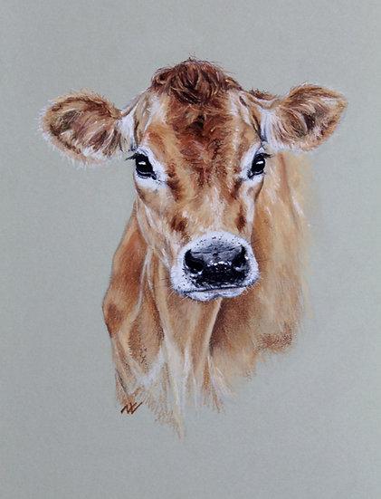 Jersey Cow Ltd ed giclee print