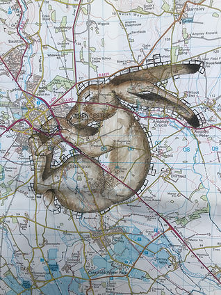 Cirencester Hare Map.jpg