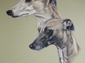 I heart whippets charity auction