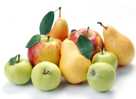 Ősz - támogassuk az immunrendszerünket