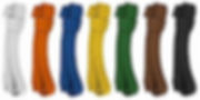 kyokushin-belt-colors[1].jpg
