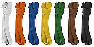 kyokushin-belt-colors[1].jpg