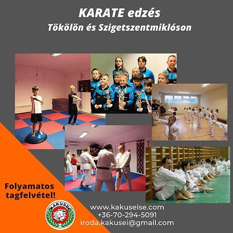 Kakusei karate -folyamatos tagfelvétel