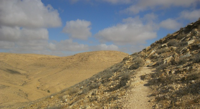 sert hikes and trails in the world - Negev Trek - great desert expiriance