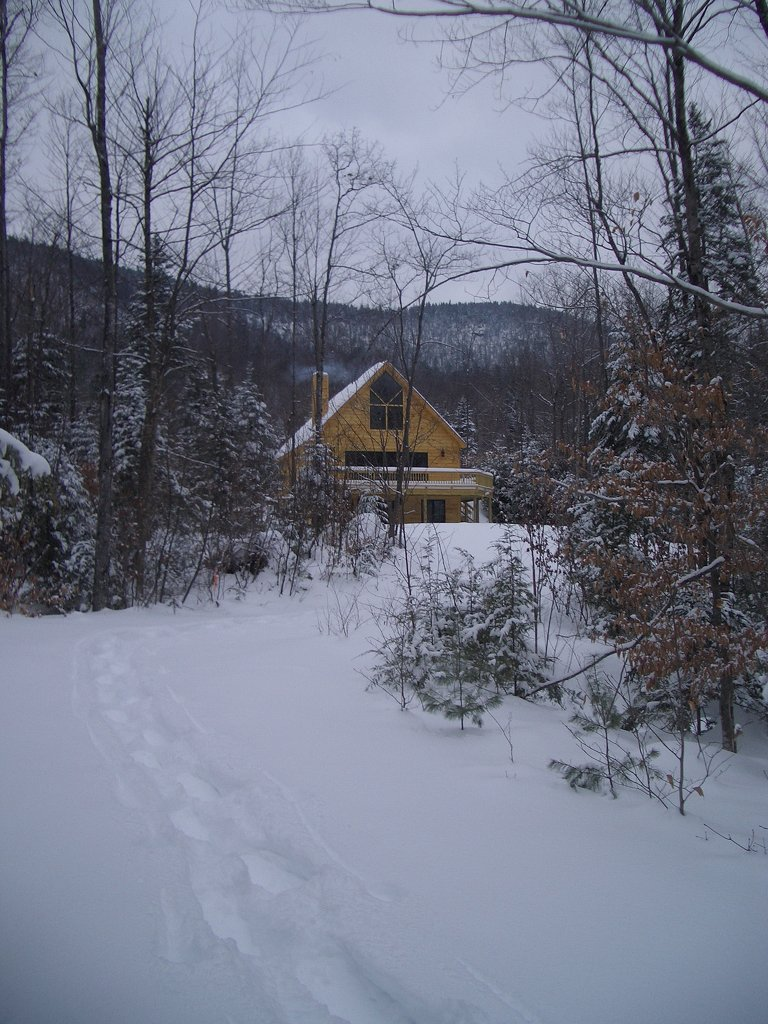 Brook Chalet Trails