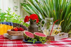 FOOD SUMMER TABLE_7490 Marsha Randolph