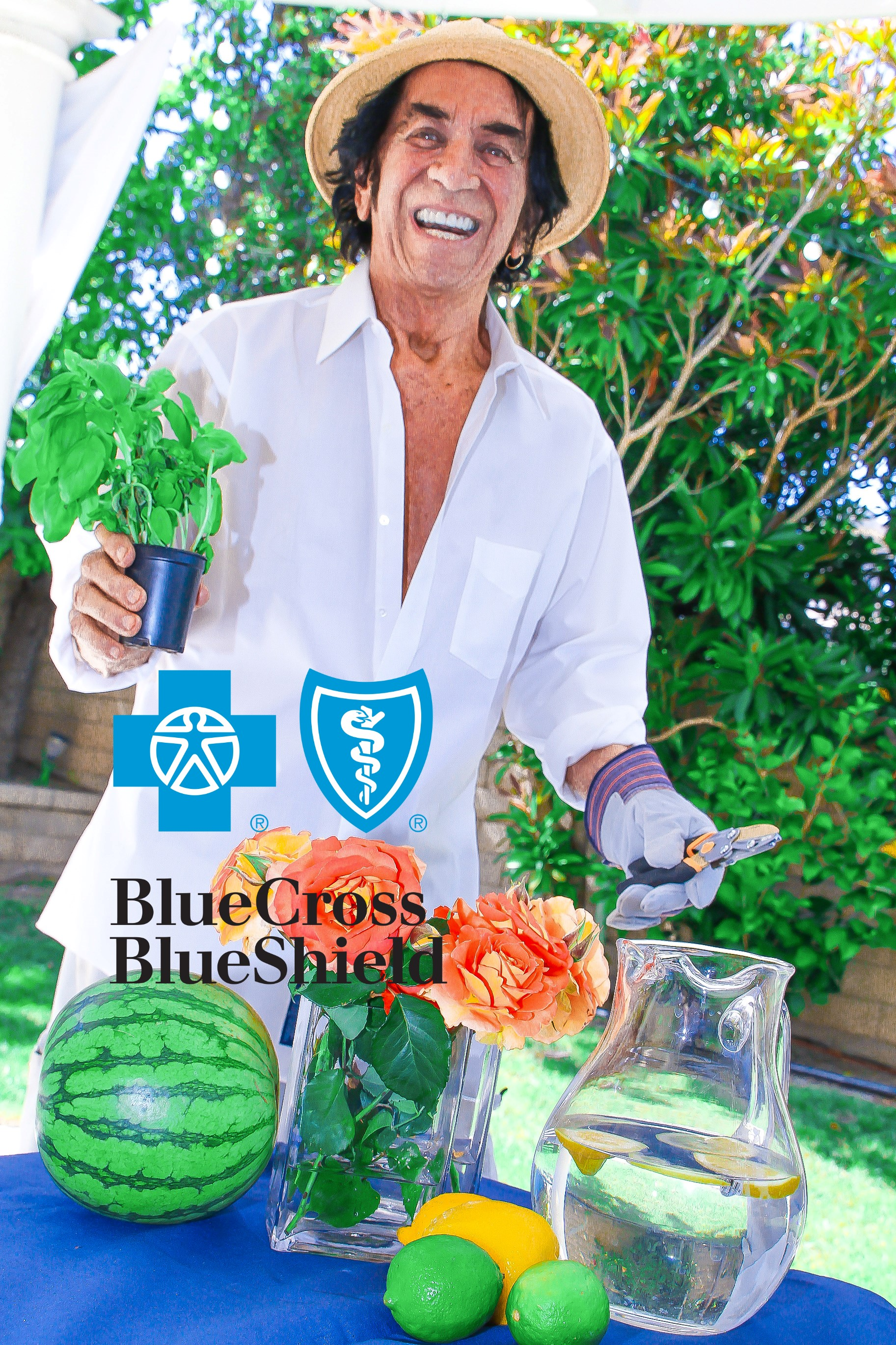 BLUE CROSS bcbs_montage SAMPLE 1