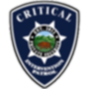 patch_cip1-300x300.png