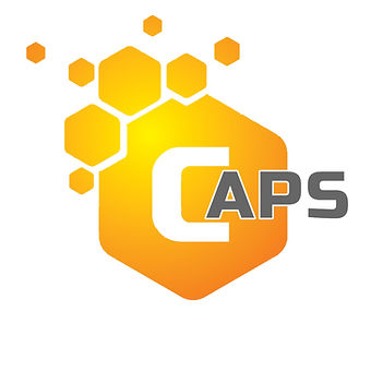 Economic Substance Compliance Automation and Processing System (CAPS)