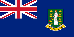 BVI Reporting Requirements for Economic Substance