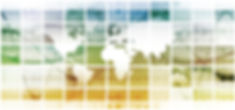 Distribution & Service Center Economic Substance Solutions
