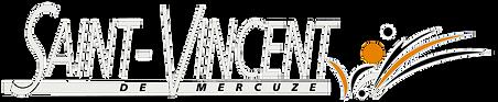 Logo SVM blanc.png