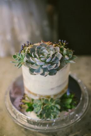Succulent ROM cake