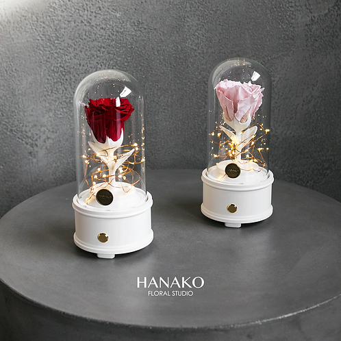 PRESERVED ROSE CLOCHE with Bluetooth Speaker