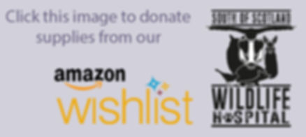 Amazon Wishlist Logo.jpg