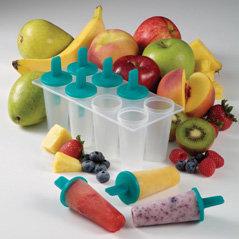KidCo Healthy Snack Frozen Treat Trays 健康急凍小吃儲存器