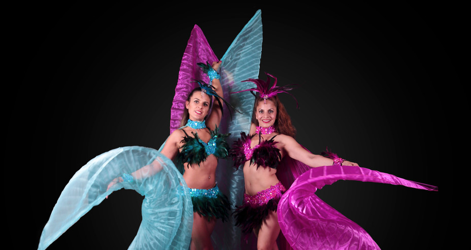 FEATHER & WINGS CARNIVAL COSTUMES
