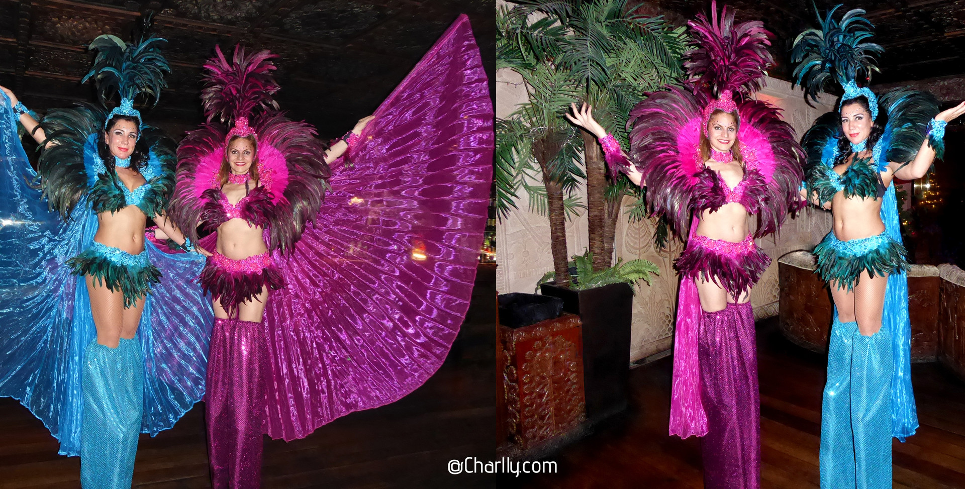 CARNIVAL STILTWALKING COSTUMES