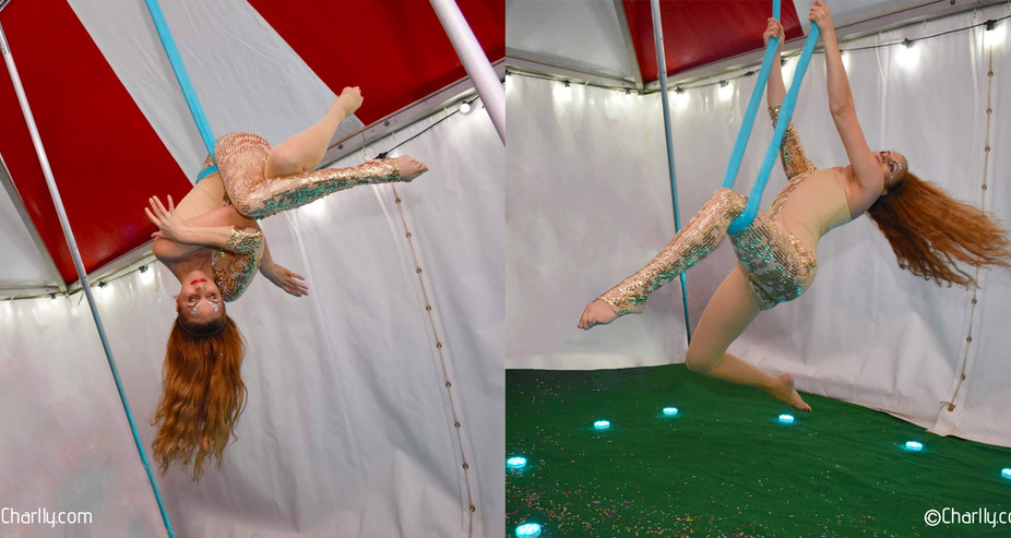 AERIAL SLING CIRCUS PARTY