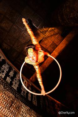 Aerial Hoop Tiger