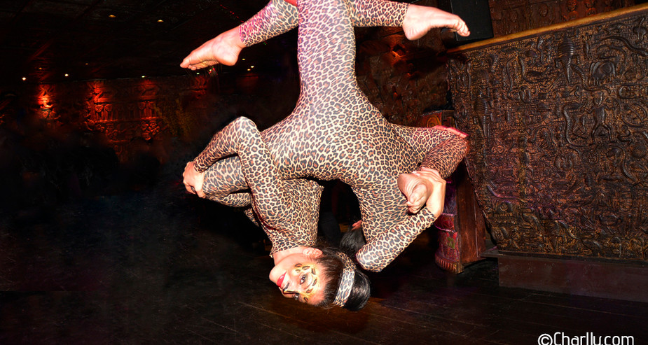 JUNGLE THEMED AERIAL HOOP DUO ACT