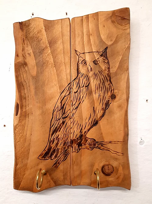 Rustic Wall Mounted Plaque: Owl with Hanging Hooks