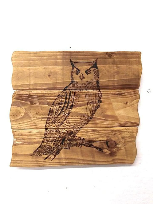 Rustic Wall Mounted Plaque: Owl