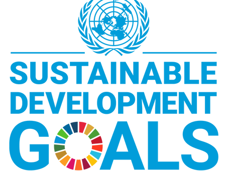 How Panta Plans to Accelerate the SDGs