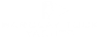 BTY LOGO WHITE 300.png