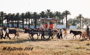 Galería Fotográfica. Rocío 1984