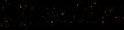 ervideo-logo bk.png