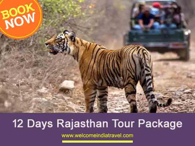12 Days Rajasthan Tour from Jaipur   12 Days Rajasthan Tour Package