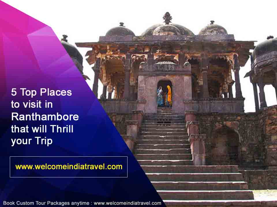 ranthambore tour packages from jaipur