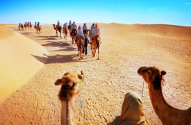 rajasthan desert tour from jaipur