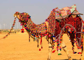 rajasthan desert tour packages | desert safari rajasthan jodhpur