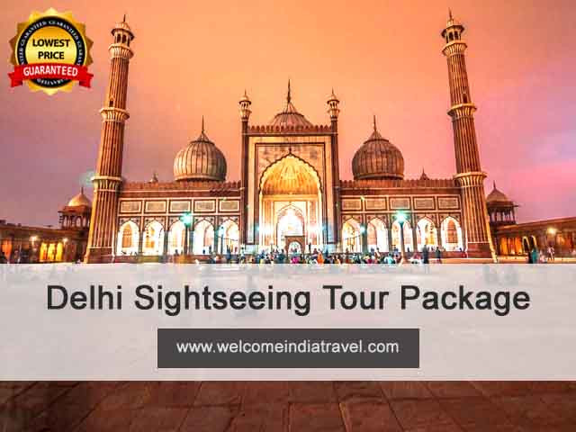Delhi Sightseeing Tour Package by ac car