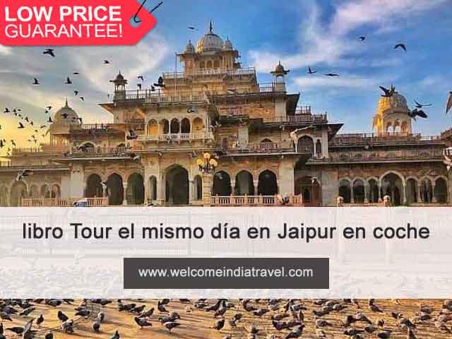 Tour el mismo día en Jaipur en coche