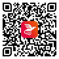 9788832982312-QR11