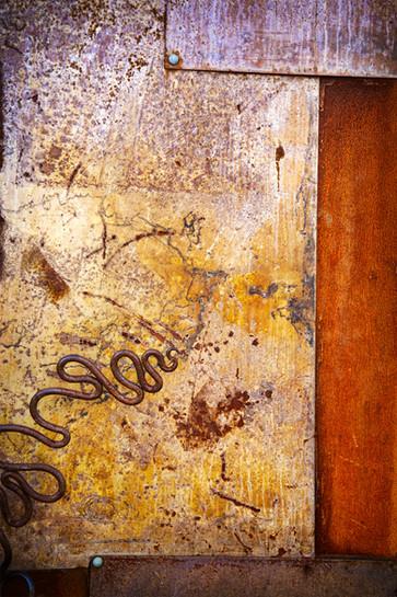 METAL DOOR WITH SERPENT