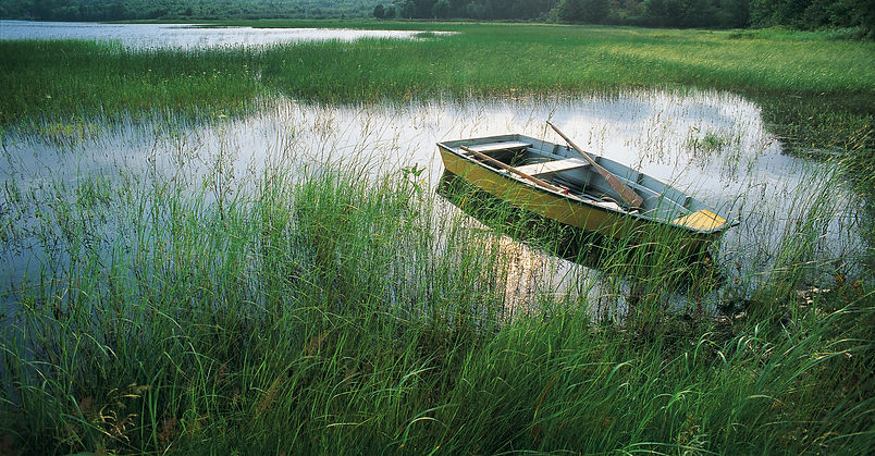 YELLOW DORY-GRAND LAKE NS.jpg
