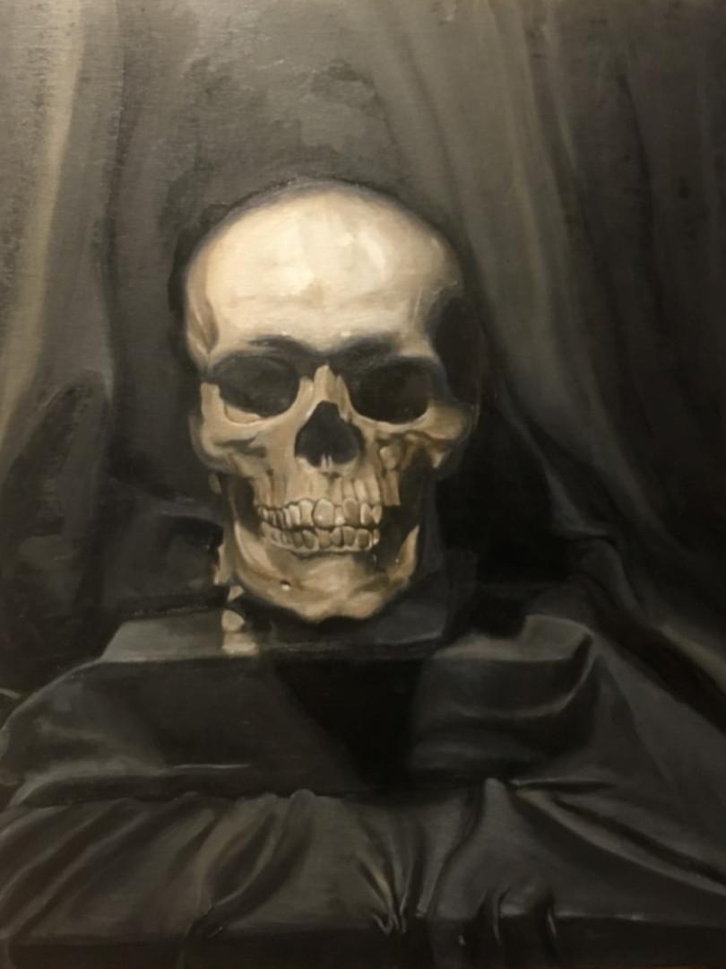 Human Skull Still Life