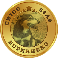 CHico-medal.png