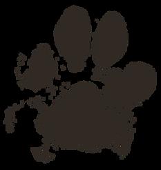 dog-paw-2263833.png