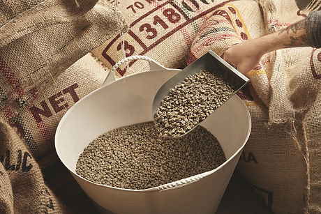 roaster-hand-holds-metal-scoop-with-raw-