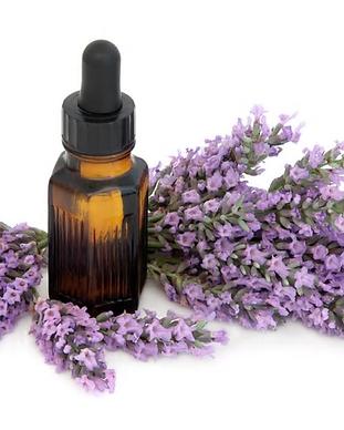 Lavender_Oil__03701.1486950341.480.480.b